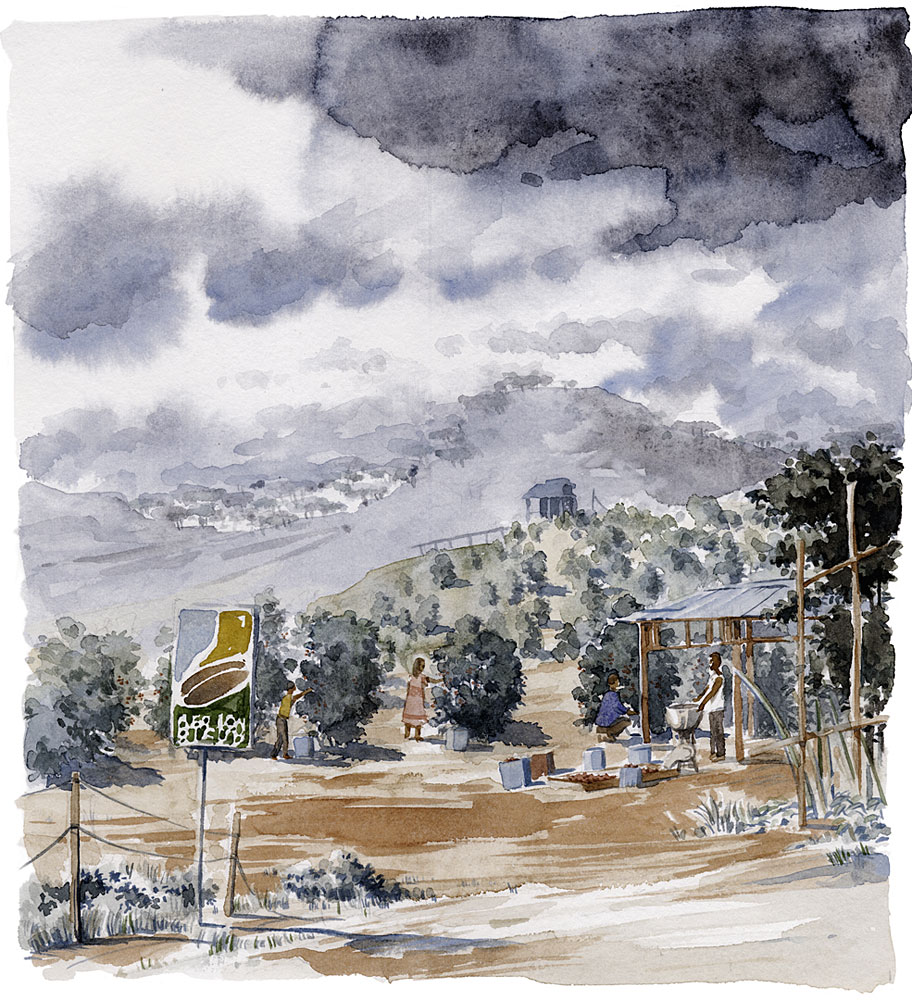 BBaumhauer-afrika1